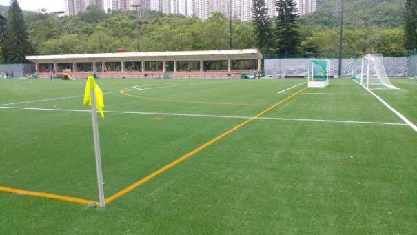 SportsWorx Turf Grass about us 2